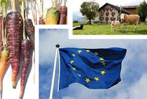Les propositions de Slow Food pour l'avenir de la Politique agricole commune