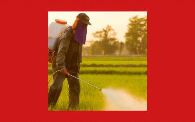 Slow Food demande aux États membres de prendre position contre le Glyphosate