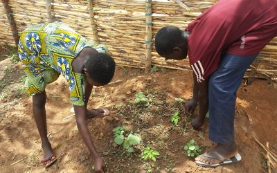 Le changement au menu: les jardins potagers au Bénin sont le point de départ contre le changement climatique