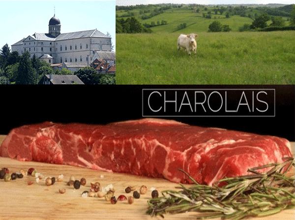 Balade en Pays Charolais