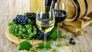 Slow Food Bourgogne reçoit le convivium Slow Food de Munich @ Maison de Rhénanie-Palatinat | Dijon | Bourgogne Franche-Comté | France