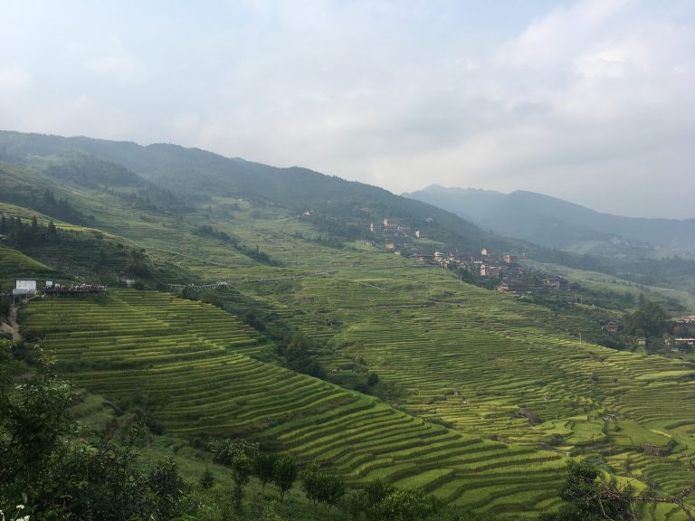 Systèmes Ingénieux du Patrimoine Agricole Mondial: Un programme FAO en lien avec Slow Food