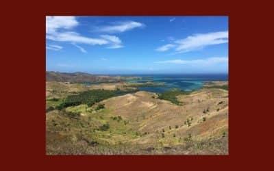 Le changement au menu : le vent du changement aux Fidji