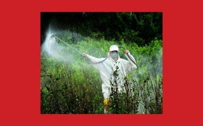Glyphosate : le combat n'est pas terminé