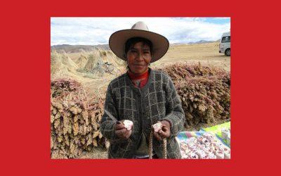 Systèmes Ingénieux du Patrimoine Agricole Mondial : Un programme FAO en lien avec Slow Food