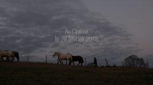 Sortie du film documentaire Trait de Vie @ Au cinéma