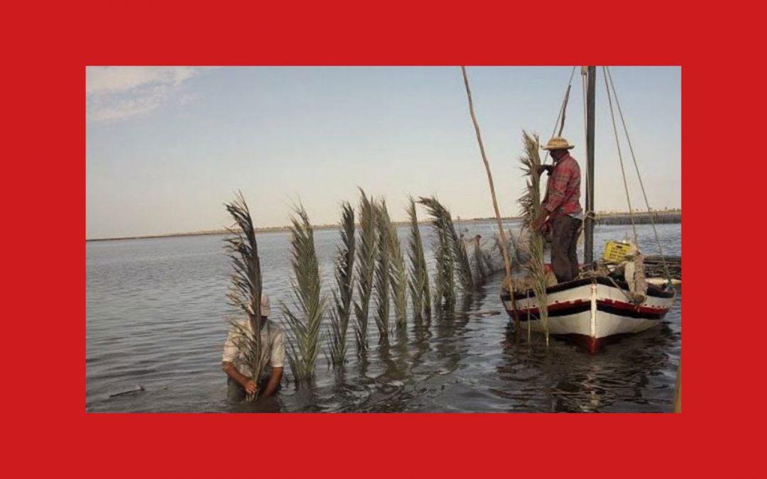 De la pêche artisanale à la cuisine responsable des deux côtés de la Méditerranée