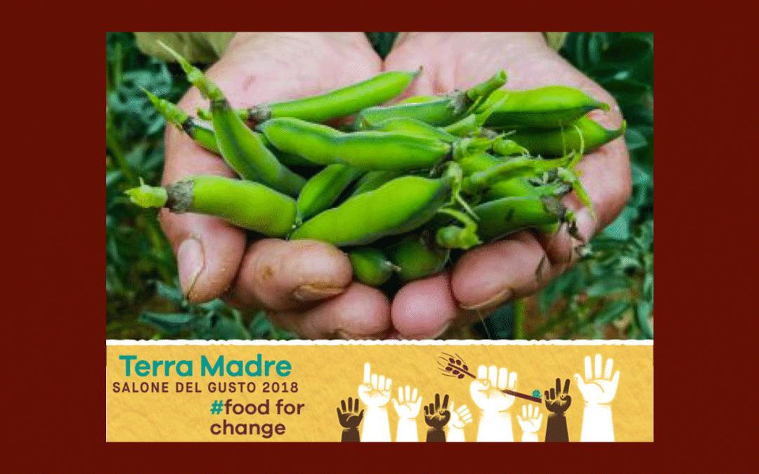 Terra Madre Salone del Gusto, guide des ateliers du goût : Slow Fish, graines et végétariens!