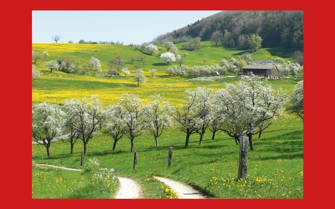 """Slow Food Suisse veut lancer l'initiative populaire fédérale """"Jeunesse + Goût"""""""