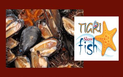 Une récolte durable des fruits de mer est possible et à Sidi Boulanouar on la célèbre !