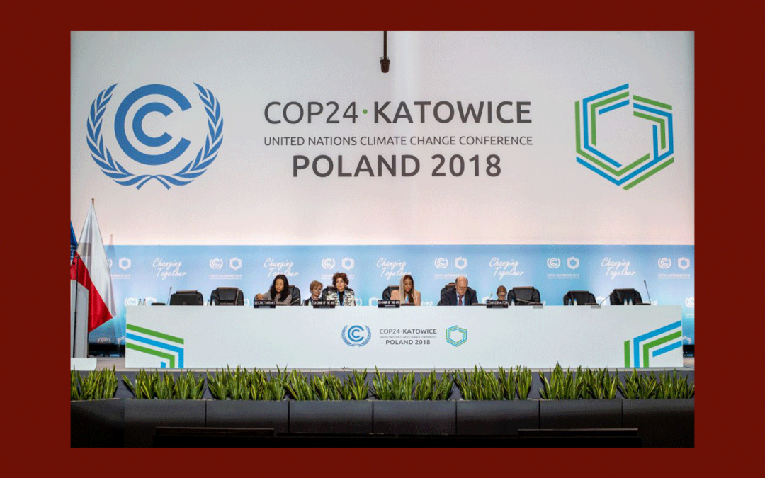 COP24 – Slow Food : Nous voulons des lois claires et contraignantes…