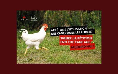 Il est temps de dire non à l'élevage en cage : signez la pétition !