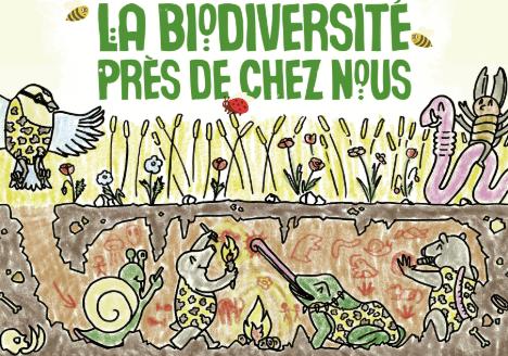 Concours de dessins pour les écoles sur : la biodiversité près de chez nous