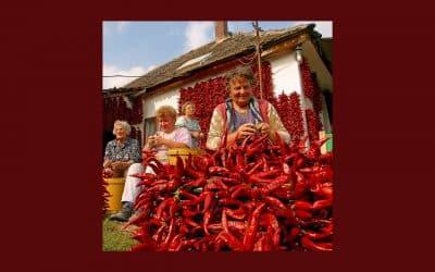 Lettre Ouverte de Carlo Petrini à la Communauté Slow Food