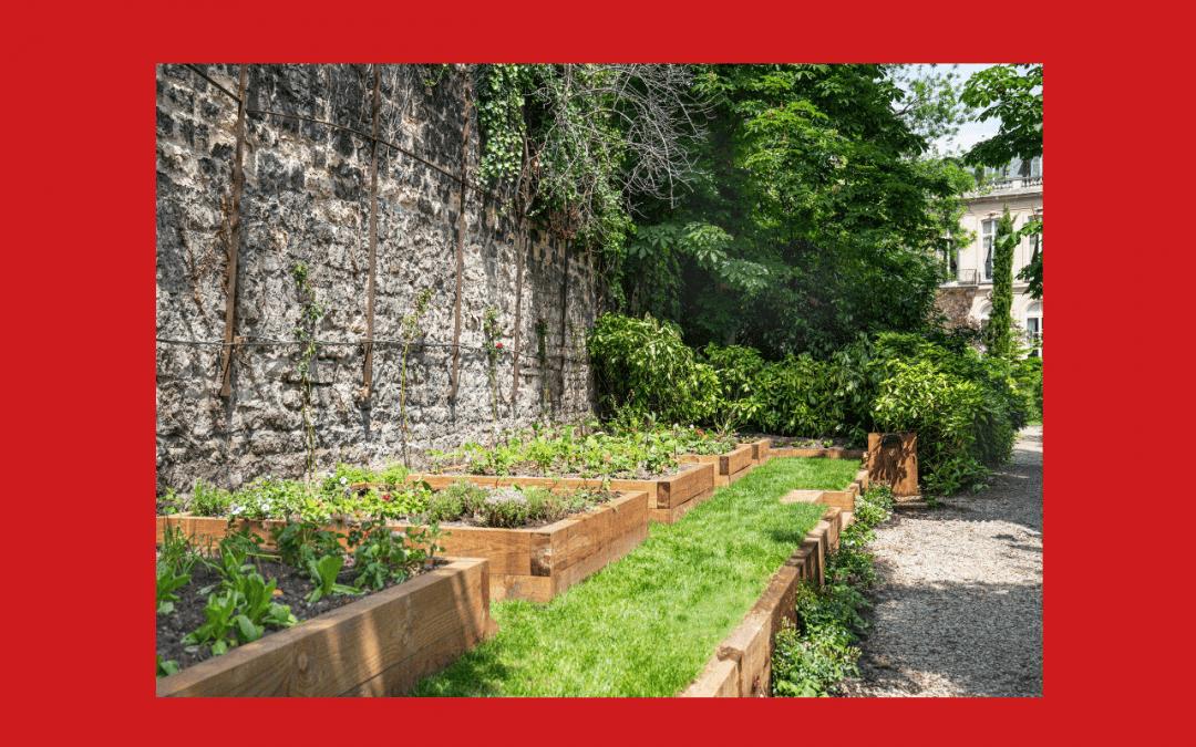 Slow Food et l'Ambassade d'Italie à Paris rendent hommage à Léonard de Vinci par la création d'un jardin potager