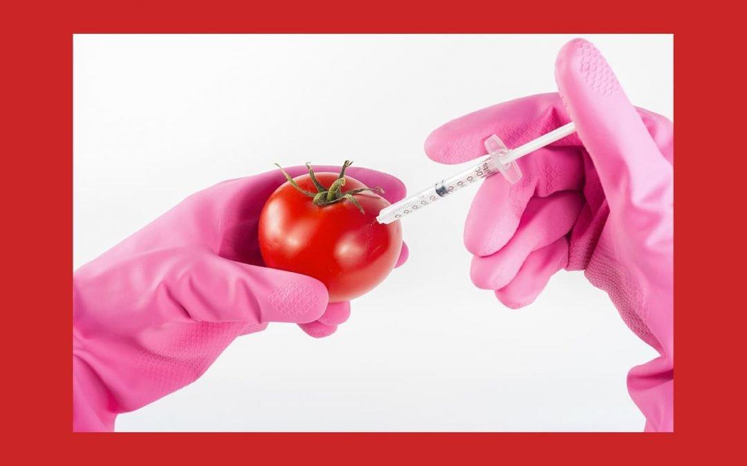 L'UE ouvre-t-elle la porte aux OGM cachés?