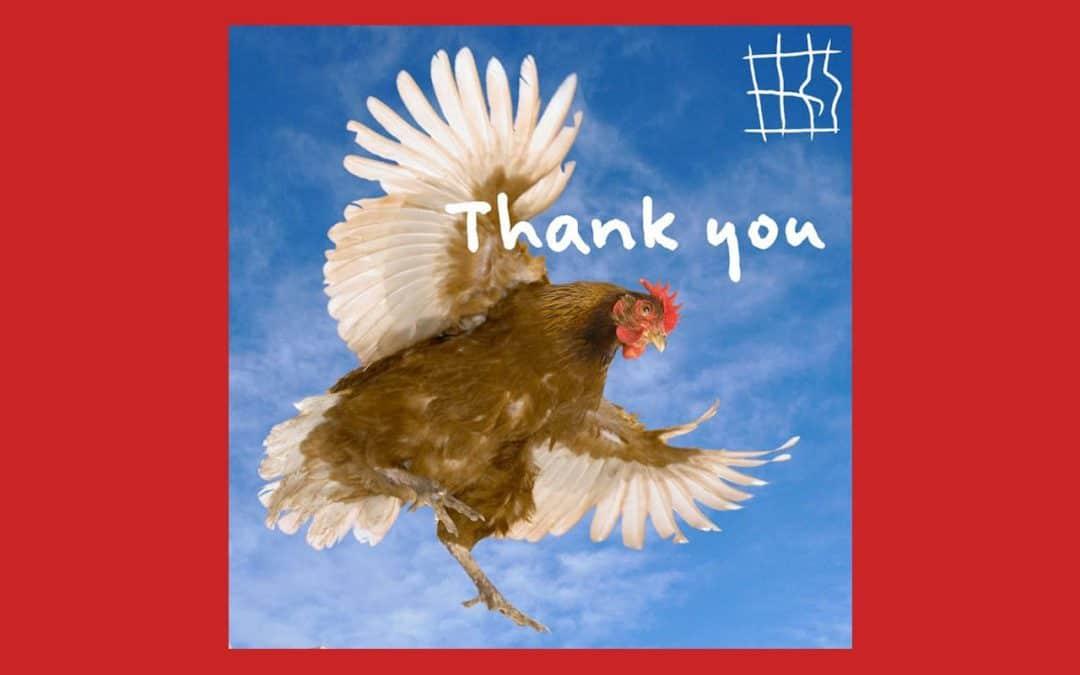 Journée historique pour les animaux de ferme : plus d'1,5 million de signatures recueillies au terme de l'ICE contre l'élevage en cage